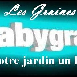 Les-graines-de-Babygraines